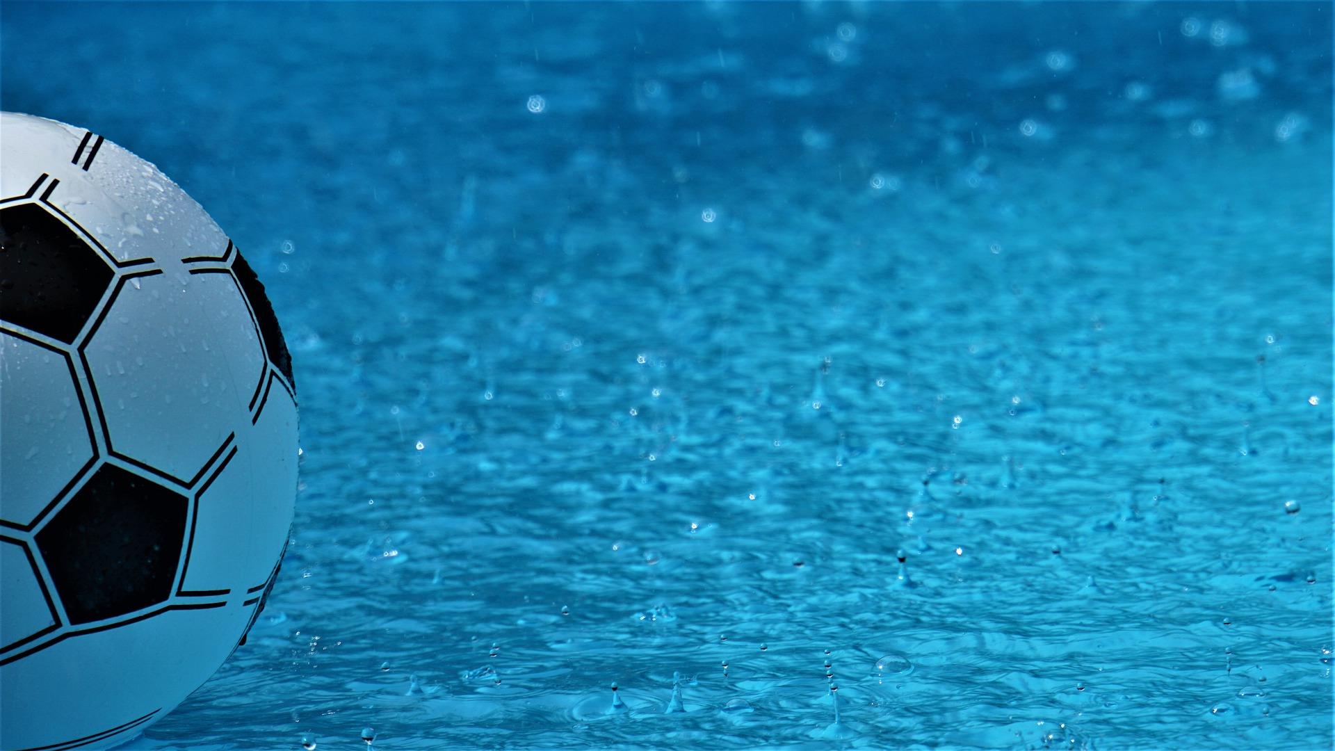 Regenschutz - Lichtschachtabdeckung PLARES   fliegengittermacher.de